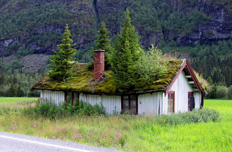 Norwegian Grass roof homes « Inhabitat – Green Design, Innovation .
