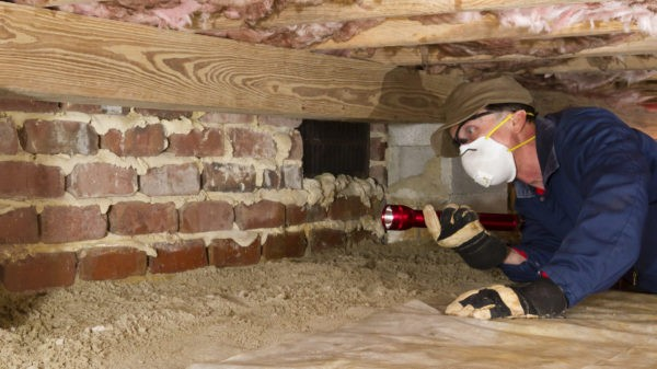 Why Your Crawl Space Should Never Be Neglected | The Homestead .
